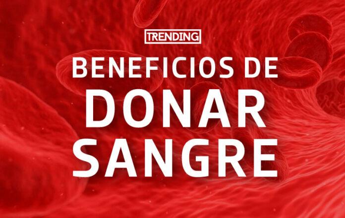 Conoce todos los beneficios de donar sangre trending magazine revista salud
